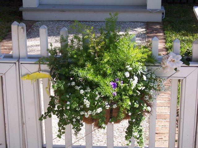 PlantsLove17